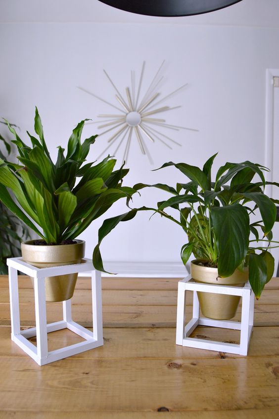 30 Cool Plant Stand Design Ideas For Your House Plants