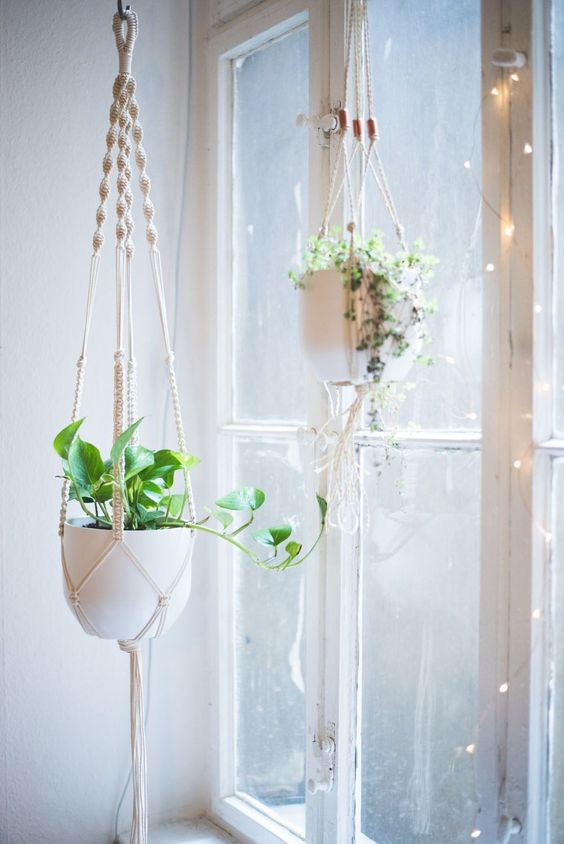 15+ Beautiful Hanging Plants Ideas